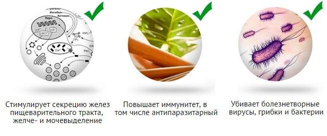 Польза антипаразитарного чая